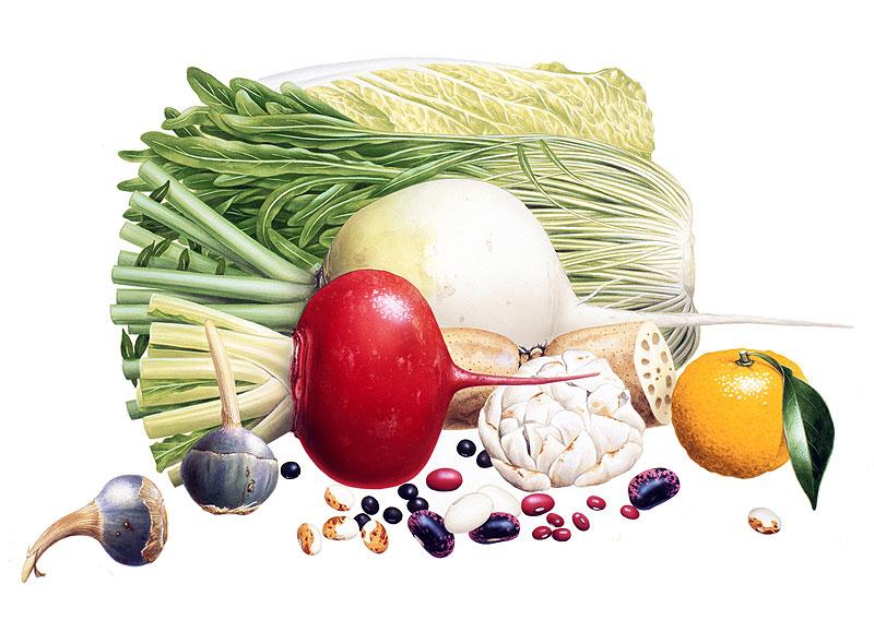 サラダイラスト 旬のレシピ 1月 冬の野菜果物